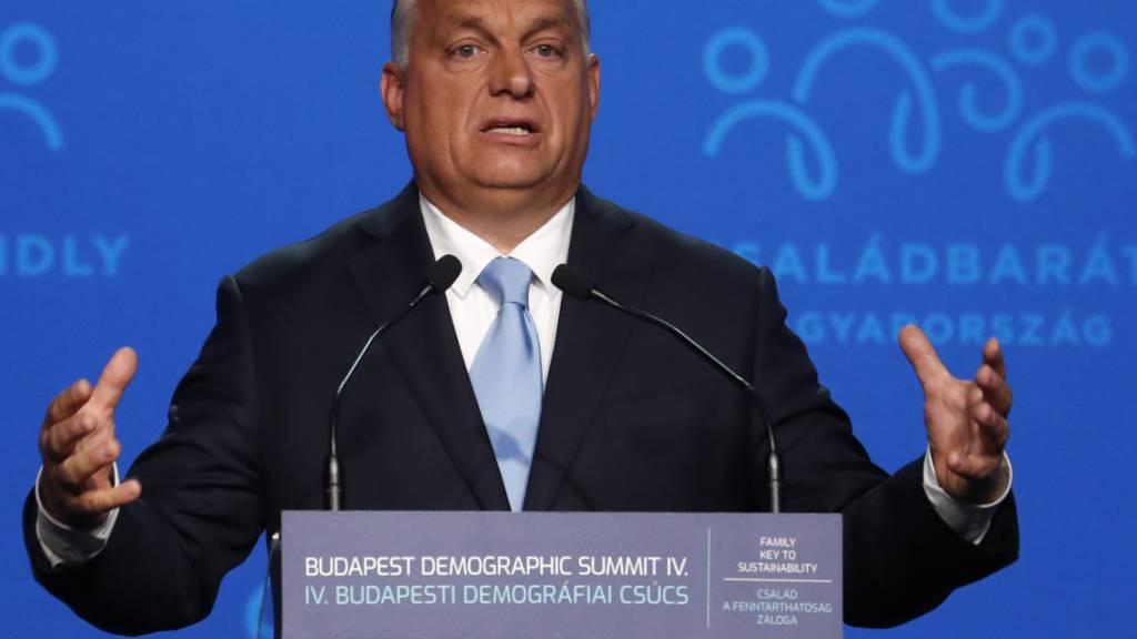Aussenseiter will Orban herausfordern