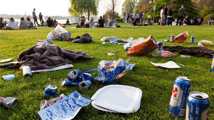 Liegen gelassener Abfall: Ein mögliches Freiwilligenprojekt (Archivbild).
