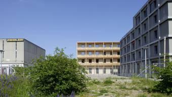 Der Bau in der Erlenmatt Ost von Degelo Architekten.