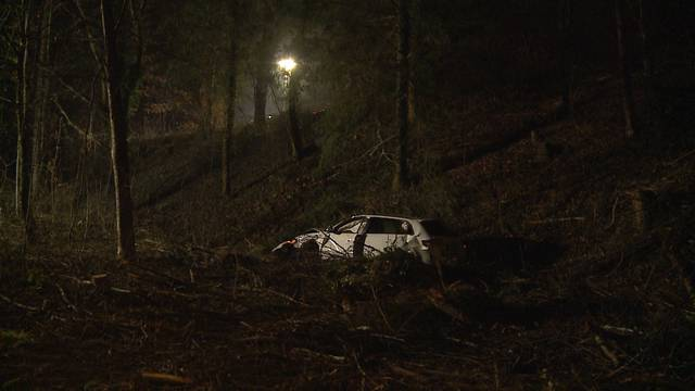 Bremgarten: Auto stürzt Böschung hinunter – Fahrer verlässt unverletzt die Unfallstelle