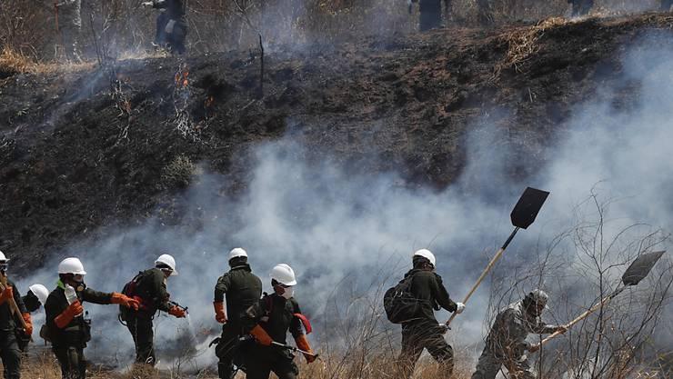 In Bolivien sind seit August zwei Millionen Hektar Wald und Grasland durch Brände zerstört worden. Umweltschützer geben der Regierung die Schuld dafür. Per Gesetz hatte die Regierung das Abbrennen von Wald- und Weideflächen für landwirtschaftliche Zwecke gefördert. (Bild vom 30. August)