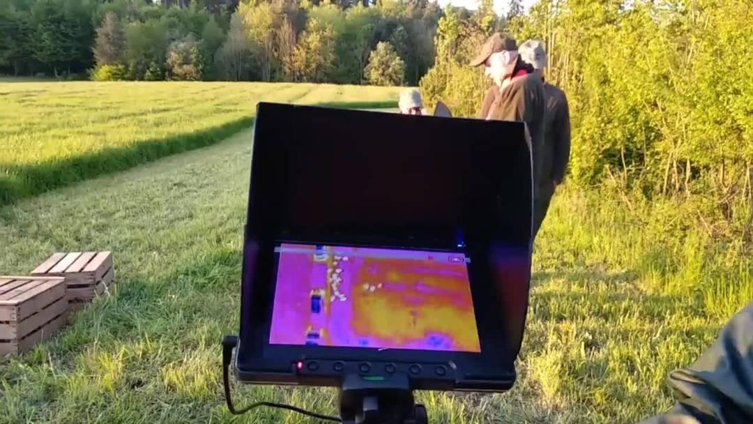 Einsatz in Nennigkofen: Mittels Drohne wird versucht, möglichst viele Rehkitze zu retten, bevor gemäht wird
