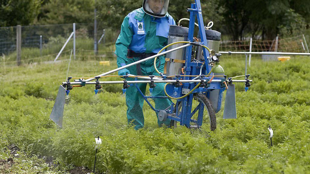 Bund überprüft Zulassung von Fungizid Chlorothalonil