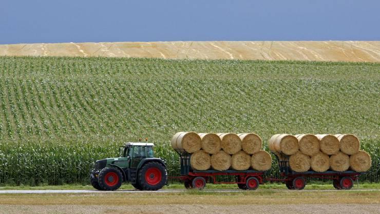 Der Jurapark Aargau eröffnet den ansässigen Bauern neue Möglichkeiten. (Symbolbild)