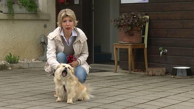 Aus dem Tierheim des Aargauischen Tierschutzvereins ATs