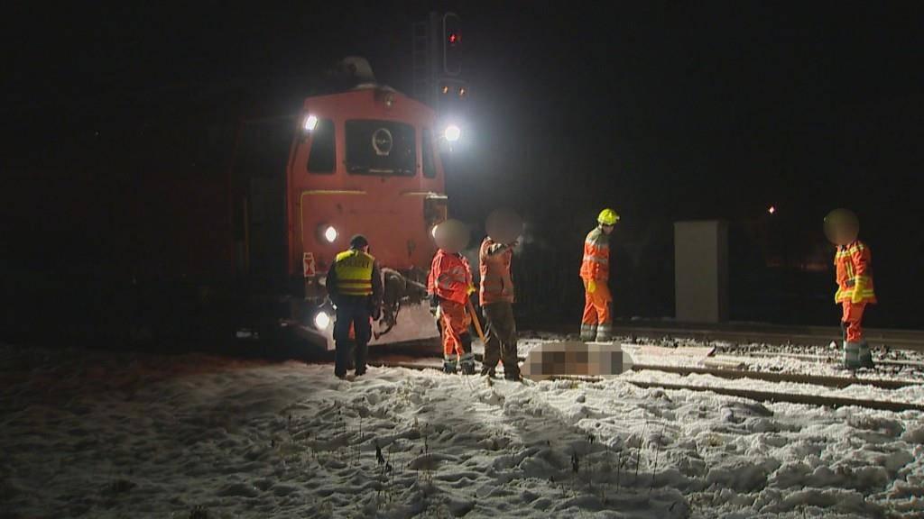 Pferde-Unfall in Horn TG (© BRK News/Beat Kälin)