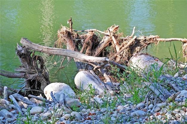 Die Uferbefestigungen haben sich im Hochwasser der ersten Jahreshälfte bewährt.