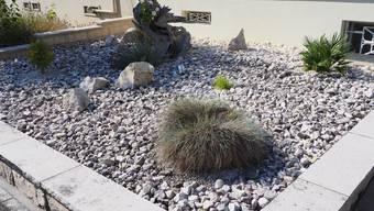 Steingarten oder Steinwüste?