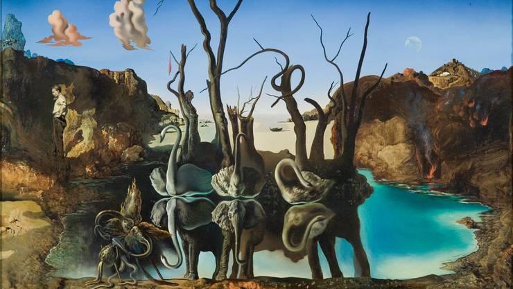 Salvador Dalís «Schwäne spiegeln Elefanten wider» ist eines von 19 Werken, die dem Basler Kunstmuseum ausgeliehen werden. Das Bild ist so rätselhaft wie die Absichten der Leihgeber.