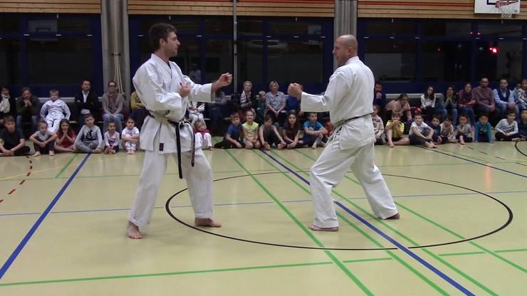 Karate-Instruktoren Kampfsportschule Aarau