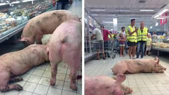 Aus Protest gegen tiefe Preise treiben französische Viehzüchter ihre Schweine durch einen Supermarkt in Agen.
