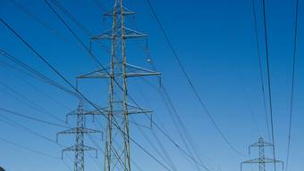 Die geplante Stromleitung sorgt für Unmut. (Symbolbild)