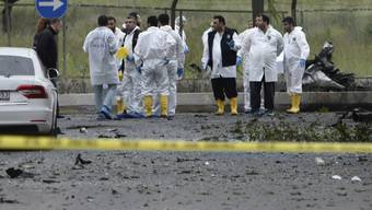 Starke Detonation in Istanbul: Die Wucht der Autobombe liess auch die Bäume erzittern.