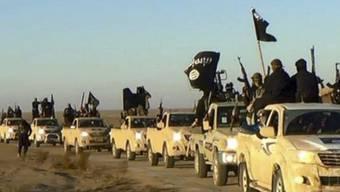 Ein Konvoi der sunnitischen Fanatiker vom so genannten Islamischen Staat (IS) auf dem Weg von Rakka in Syrien in den Irak (Aufnahme vom Sommer 2014).
