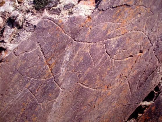 30 000-jährige Tierdarstellungen findet man in Foz Cõa.