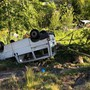 Fahrer und Beifahrer des Lieferwagens wurden schwer verletzt. Einige Schafe wurden beim Unfall getötet.