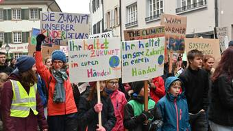 Rund 150 Schüler und Teilnehmende aus der Bevölkerung beteiligten sich in Olten am Schüler-Streik für den Klimaschutz