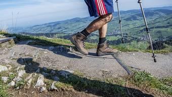Die Menschen erholen sich laut einer Studie gerne in der Natur, sofern diese nicht zu wild ist und über gute Wanderwege verfügt: Wanderer auf der Ebenalp AI im Herbst 2018.
