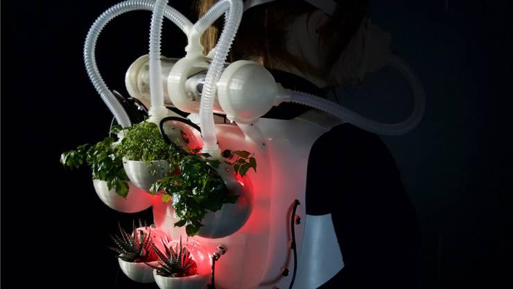 Reagieren diese Pflanzen wirklich auf ihre Umwelt? Kleidungsstück von Maria Castellanos und Alberto Valverde.