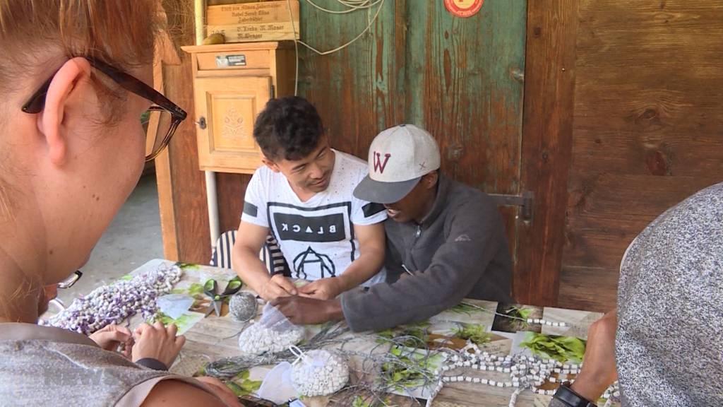 Teuffental bei Thun: Flüchtlinge helfen auf Bauernhof