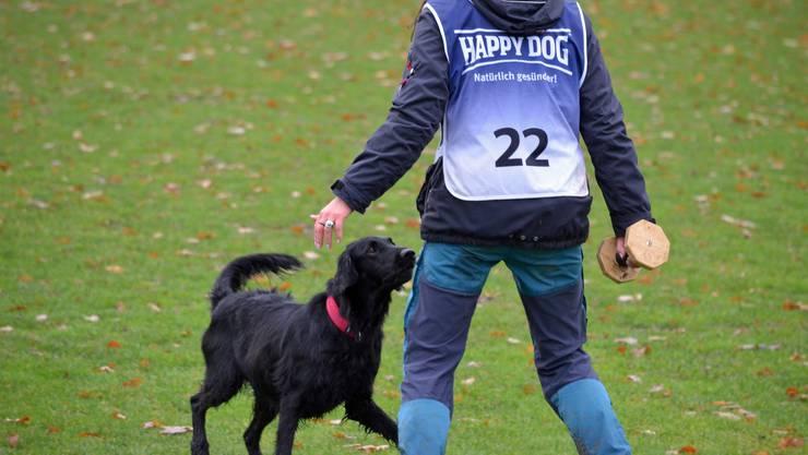 An den Schweizermeisterschaften nahmen rund 100 Hunde von 17 verschiedener Rassen teil.