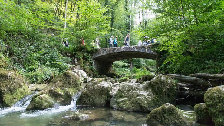 Tatsächlich Brücken bauen mussten wir im Chaltbrunnental nicht, doch sie zu begehen war umso schöner.
