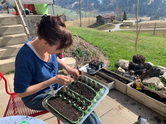 Warmes Wetter und viel Sonne: Der April ist der beste Zeitpunkt für das Aussäen von vielen verschiedenen Pflanzen.