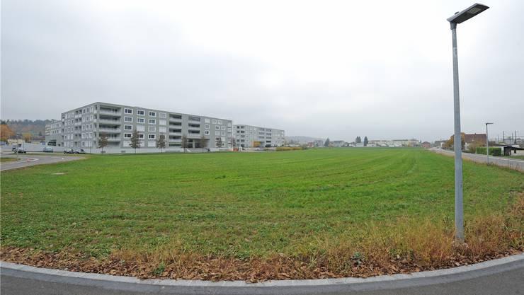 Geht es nach dem Kanton Aargau, so soll hier am Bahnweg in Rothrist eine Grossunterkunft für Asylsuchende entstehen.