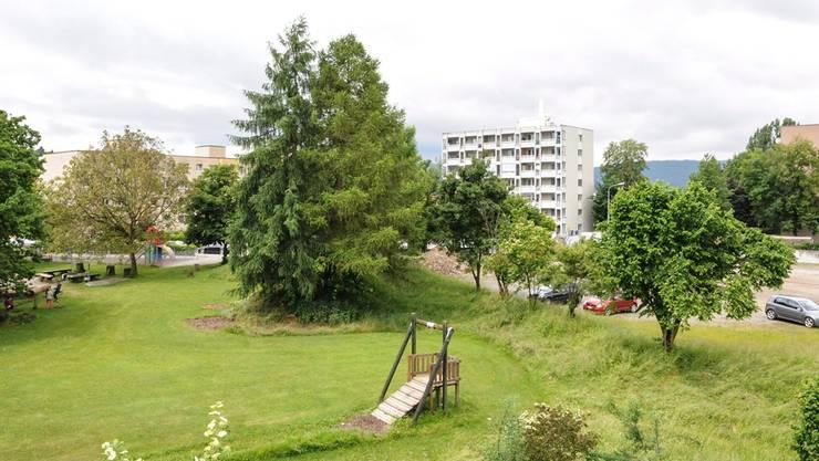 Blick vom Chilemattweg aus auf das Planungsgebiet, wo die Genossenschaft LEBENsuhr 56 Wohnungen bauen will. Toni Widmer