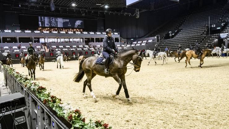 Da Pferde Herdentiere sind, macht es ihnen nichts aus, am Tag vor dem Beginn der Wettkämpfe nebeneinander einzureiten.