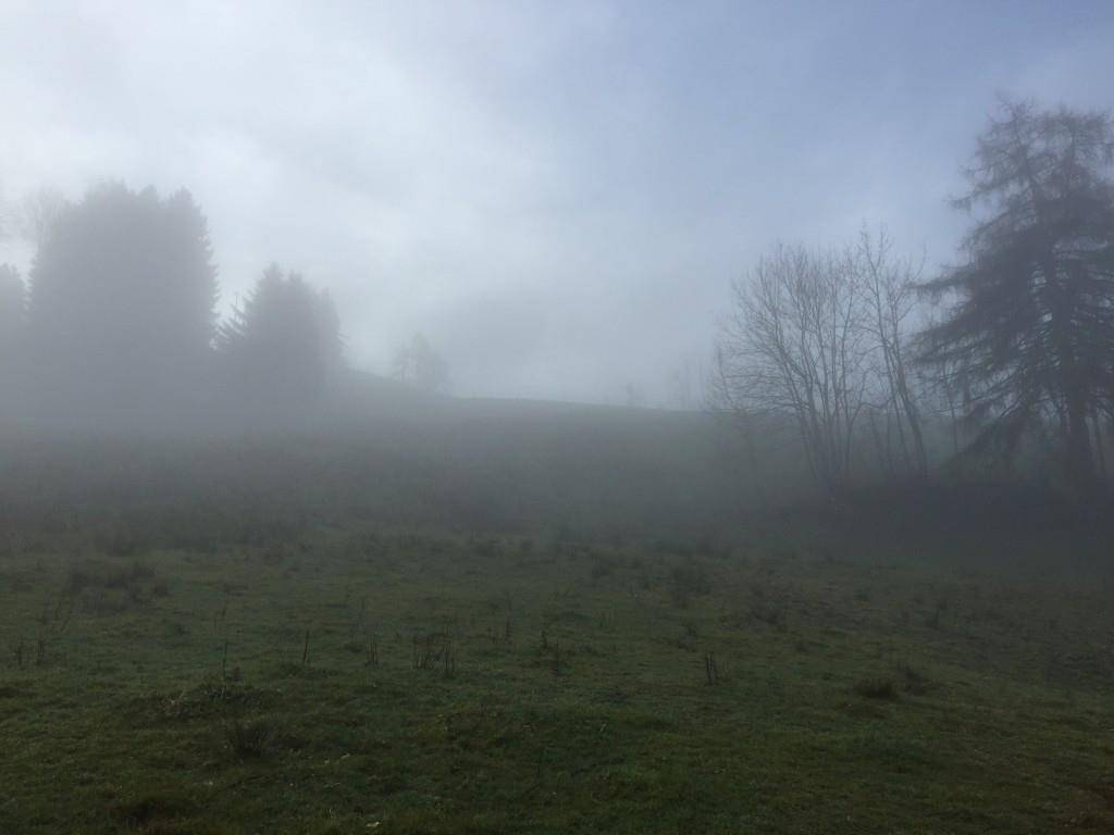 Diesen Hügel powdern die Trogner gerne herunter (© FM1Today/Fabienne Engbers)