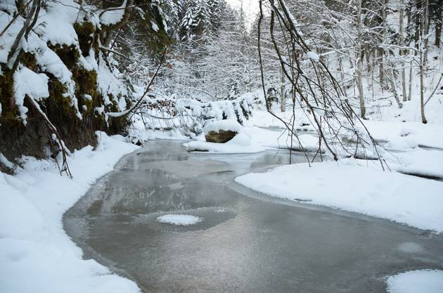 Die Bäche, wie hier der Wissbach im Thurgau, können zufrieren.