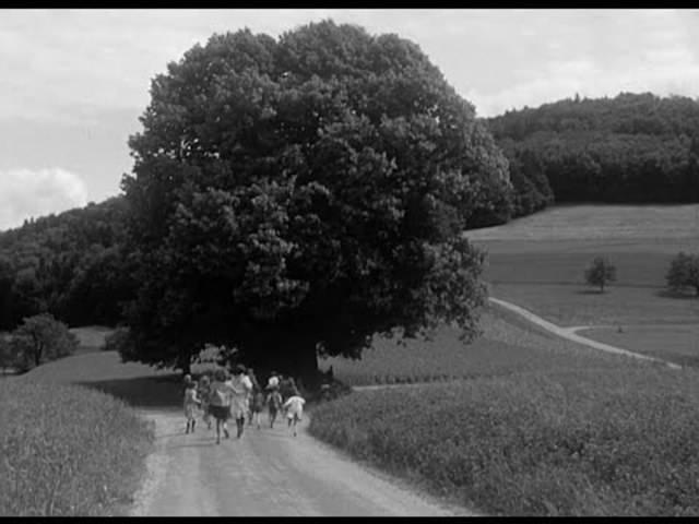 Denkmal: Die Linde von Linn in einem Beitrag des Schweizer Fernsehens vom 24. Juni 1966.