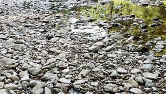 Obwohl es in den letzten Tagen einige gewitterbedingte Niederschläge gab, führen viele Flüsse weiterhin ausserordentlich wenig Wasser. (Archivbild)