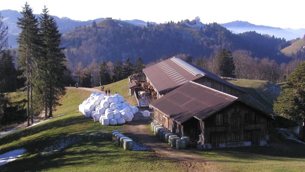 Harte Zeiten für Schweizer Bauern