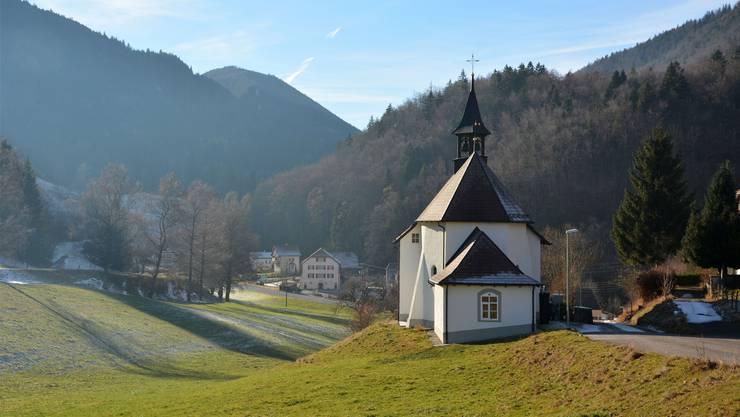 Einer der ältesten Bäume der Schweiz ist in Gänsbrunnen zu finden. (Archivbild)