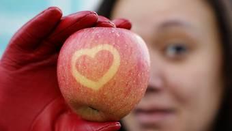 Gesunde Ernährung: Gerade gegen Winter ist es wichtig, sich gesund zu ernähren, um Abwehrstoffe aufzubauen. Wichtig sind Nahrungsmittel, die Magnesium enthalten (Bananen, Linsen, Nüsse, Trockenfrüchte). Fettsäuren machen gute Laune (enthalten in Seefischen und pflanzlichen Ölen). Serotonin, das die Stimmung aufhellt, ist in kohlehydrathaltigen Lebensmitteln wie Kartoffeln und Teigwaren enthalten.