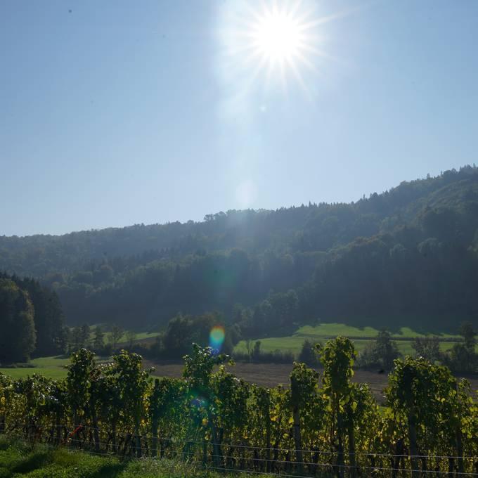 Das ist Spreitenbach