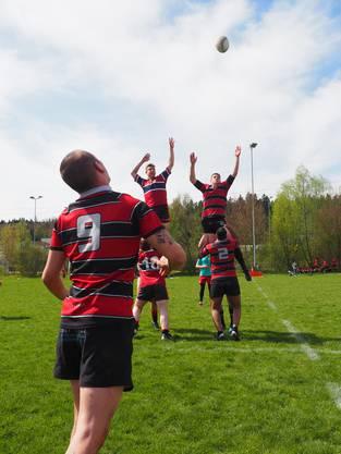 Vier Teams treten beim Rugby-Cup gegeneinander an.