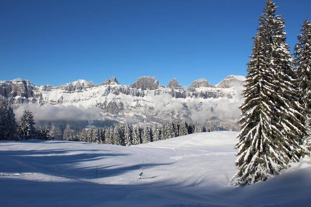 Skifahren am Flumserberg (© Bergbahnen Flumserberg)