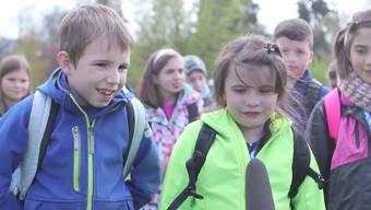 Dottiker Schulklasse räumt den ersten Preis beim Swissmilk-Wettbewerb ab