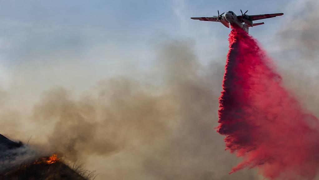 Gegen den Waldbrand im Moreno Valley wird mit Hilfe eines Löschflugzeugs angegangen.