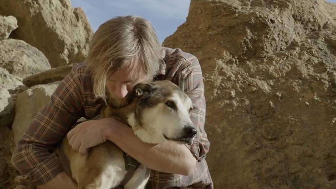 Als Ben schwer krank ist, bleibt sein Hund die ganze Zeit bei ihm – die Geschichte des Dreamteams rührt dich zu Tränen