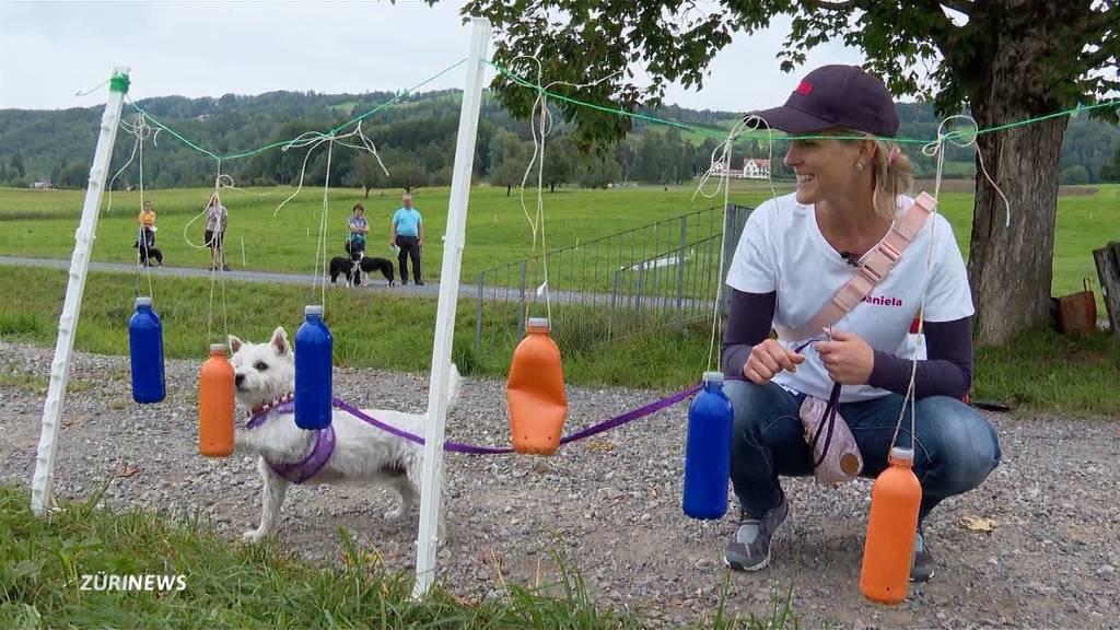 SUST-Hundemilitary: Hund und Herrchen engagieren sich für Tiere in Not