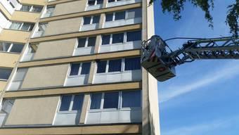 Der Bienenschwarm musste an der Fassade am 4. Stock eines Hochhauses am Bodenrain eingefangen werden.