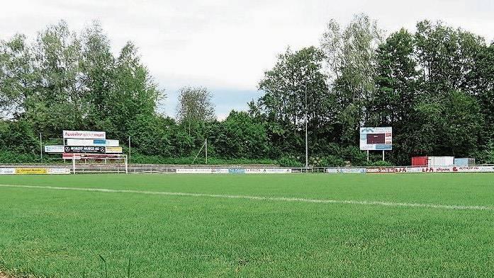 Noch ist der Rasen in Muri im Stadion Brühl natürlich.