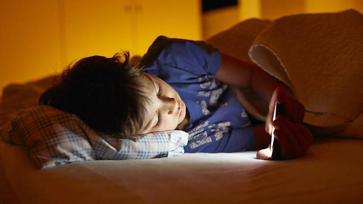 Jedes vierte Schweizer Kind surft täglich im Internet. (Symbolbild)