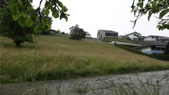 Hier soll terrassiertes Bauen ermöglicht werden: Müllerai in Oeschgen (Teilansicht), der sich am Siedlungsrand befindet. chr