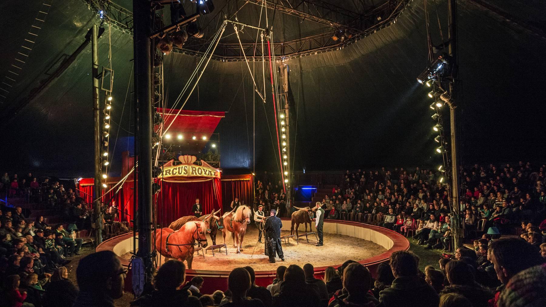 Circus Royal