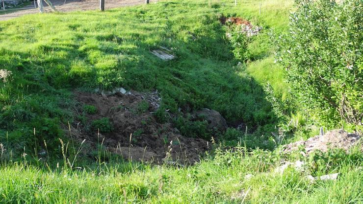 Eine der drei Dolinen, in denen illegal Abfall deponiert wurde, liegt direkt neben dem Hof.